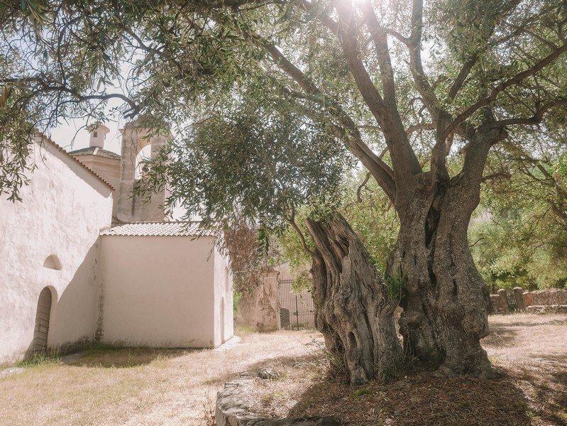 olivier chapelle sainte restitude