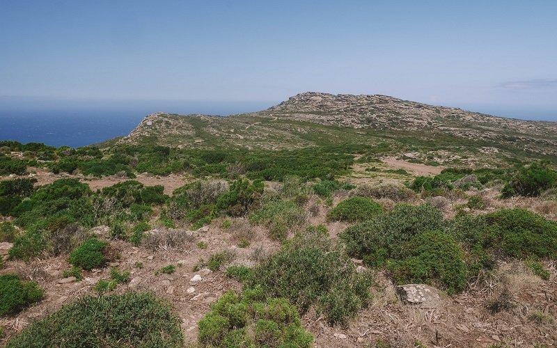 paysage moulin mattei