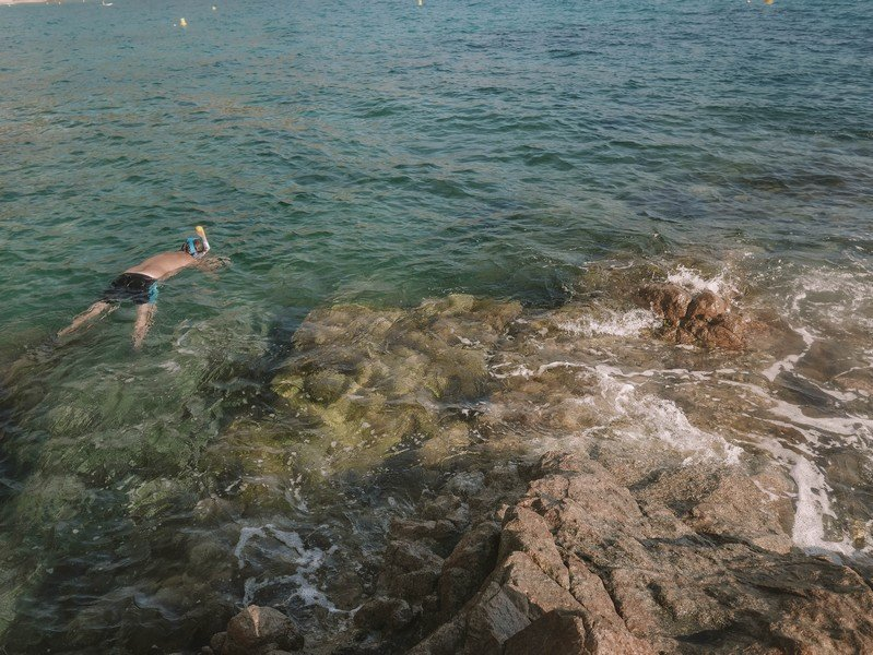 snorkeling plage d'arone