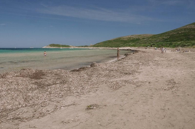 plage de barcaggio photo