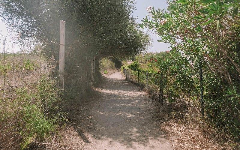 chemin site antique