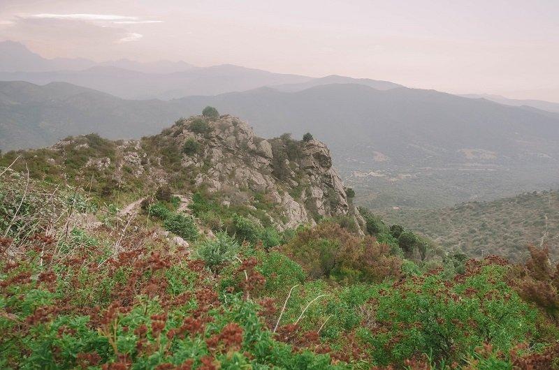 montagnes lama corse