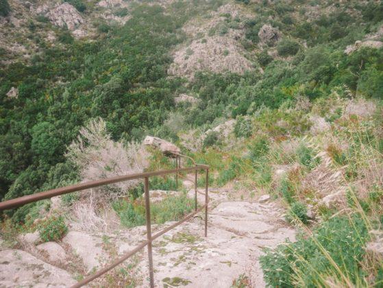 sentier randonnée lama en corse
