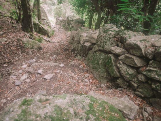 sentier avec mur en pierre sèche