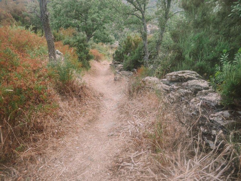 sentier vers la cascade de Sorio