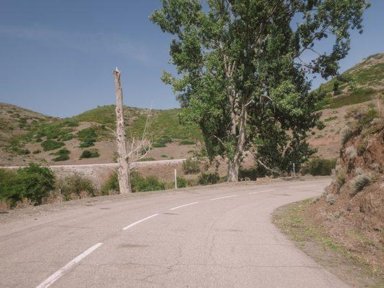 route belgodère