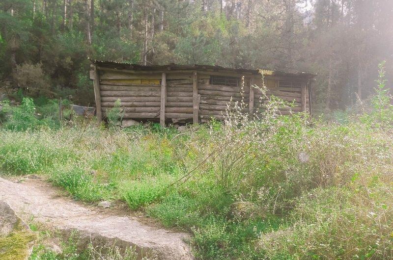 cabane en bois restonica