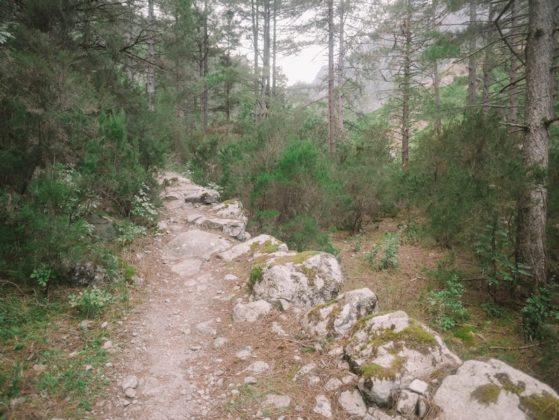 chemin de randonnée restonica
