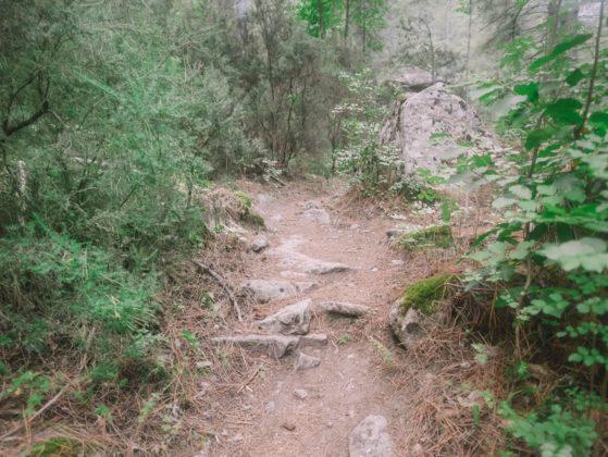 sentier restonica