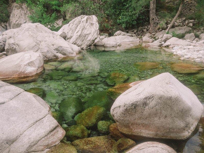 piscine naturelle restonica