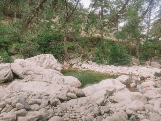 rivière restonica