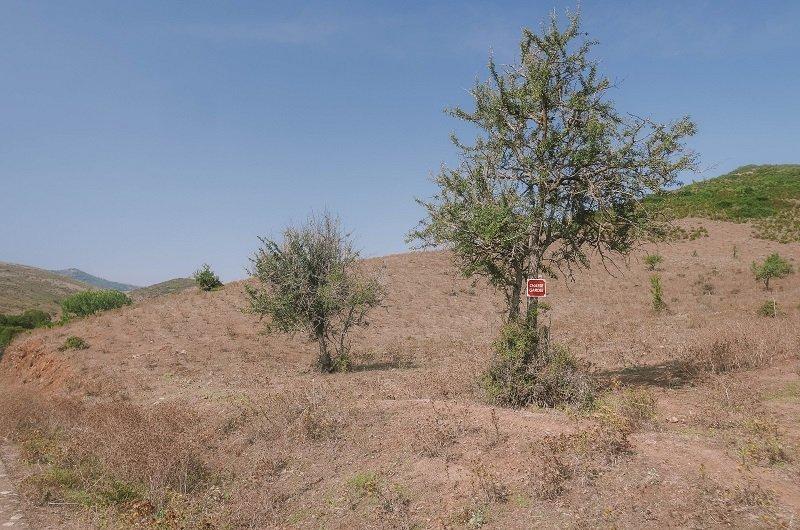 route belgodere desert