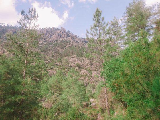 montagne restonica