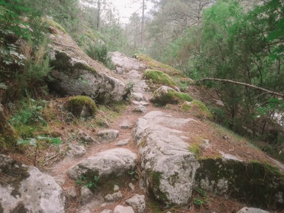 chemin de pierre restonica