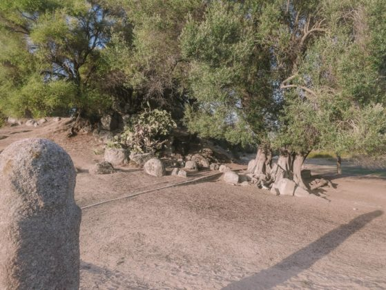 statues menhirs