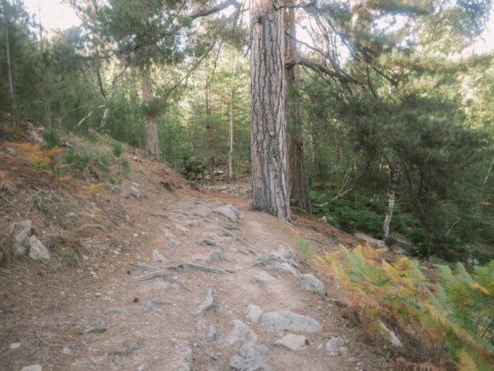 sentier randonnée radule