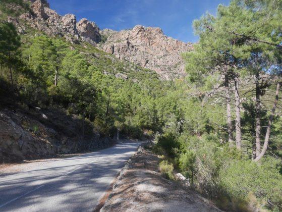 route de calacuccia