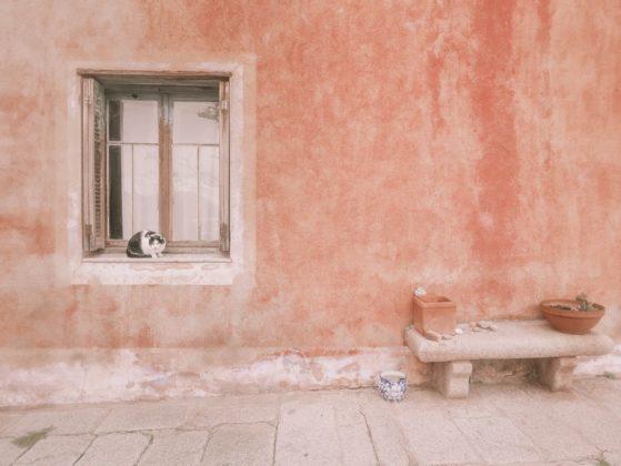 maison chat lumio