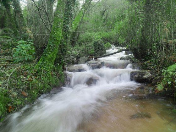 rivière sentier des moulins cuttoli