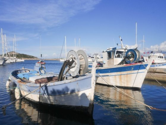 bateaux peche corse