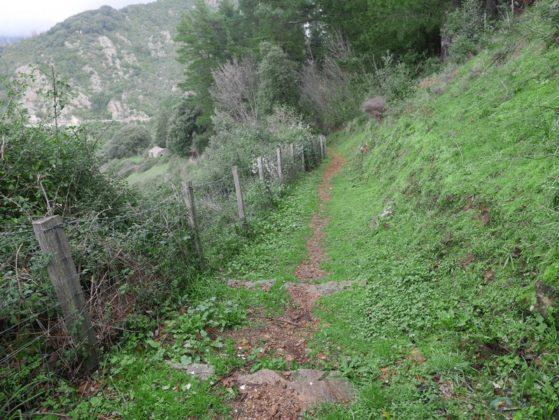 randonnée sentier des moulins cuttoli