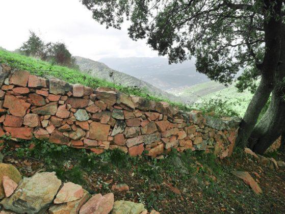 mur pierre sèche corse