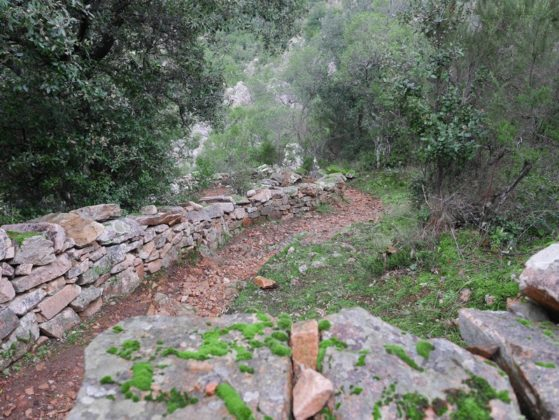 sentier mur pierre sèche corse