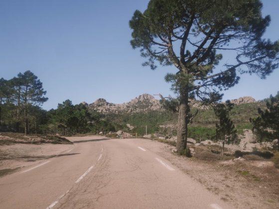 route de zonza