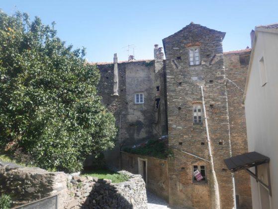 maison pierre cervione