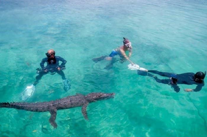 les meilleurs sites de plongée dans les caraibes
