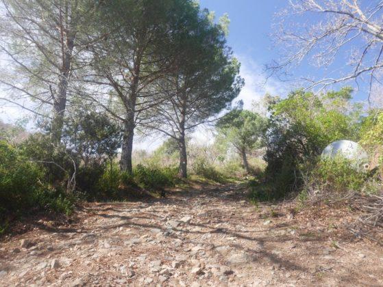 sentier randonnée talasani