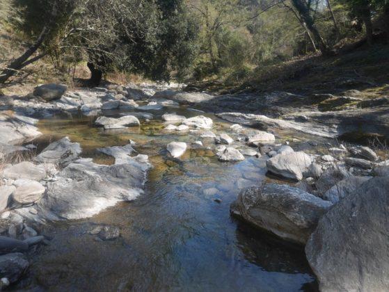 rivière petrignani