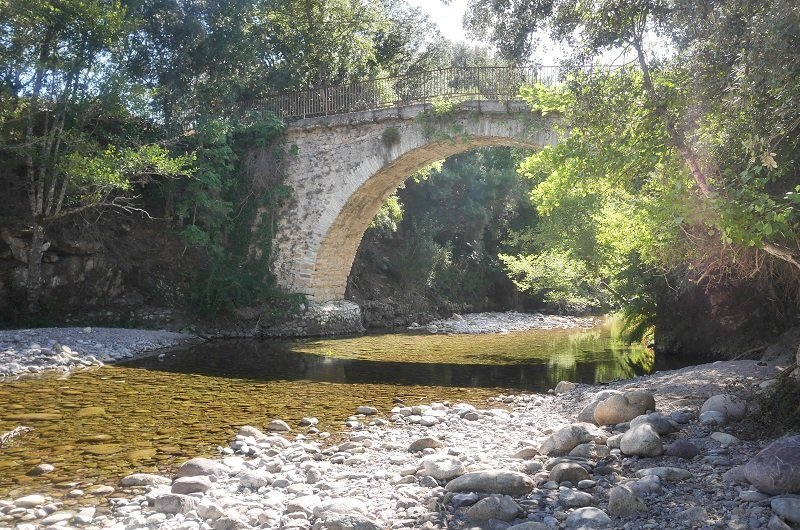 Ponte Vechju moltifao