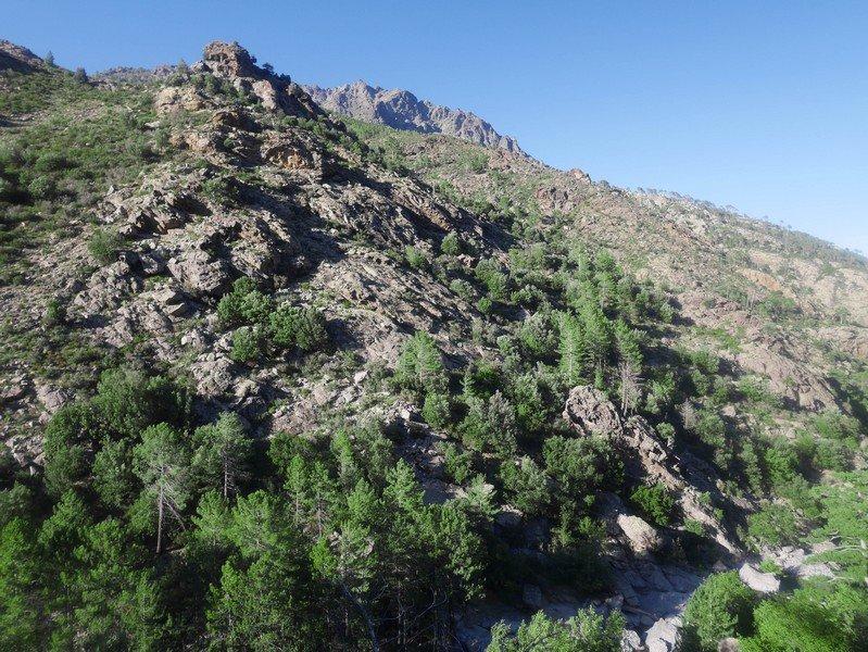 montagne asco