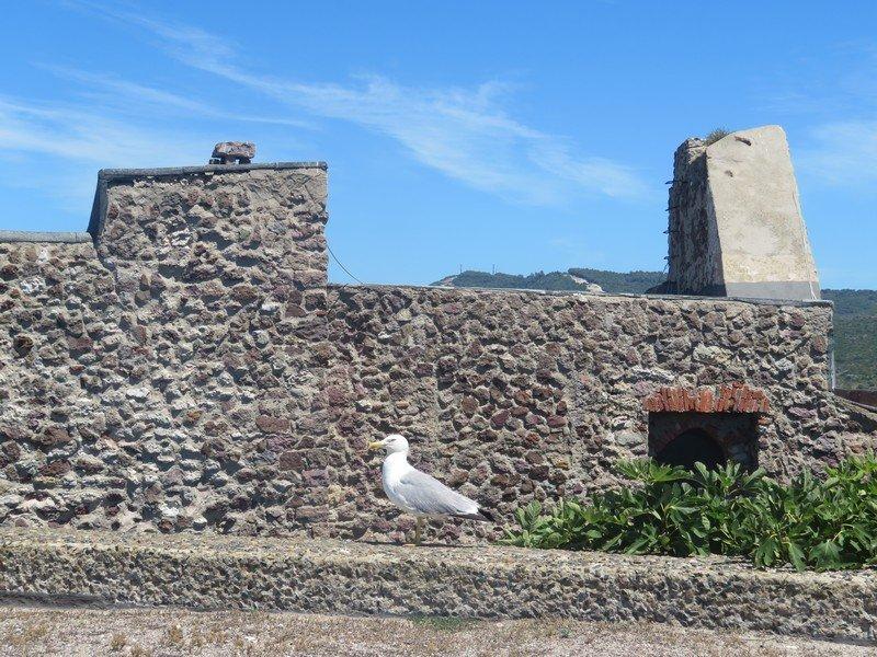 chateau castelsardo