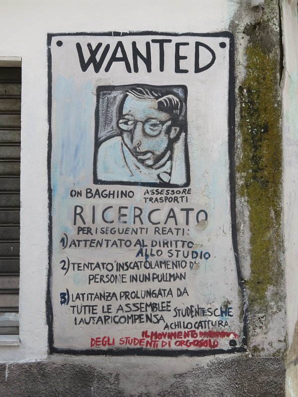 wanted ergosolo