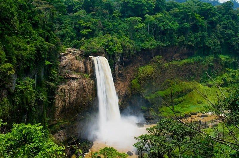 cascade cameroun