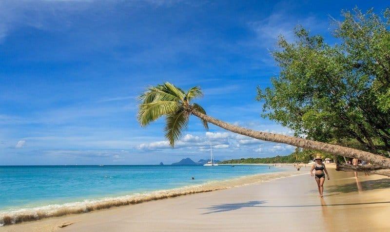 Conseils pratiques pour préparer un voyage en Martinique