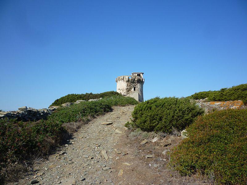 torre del falcone