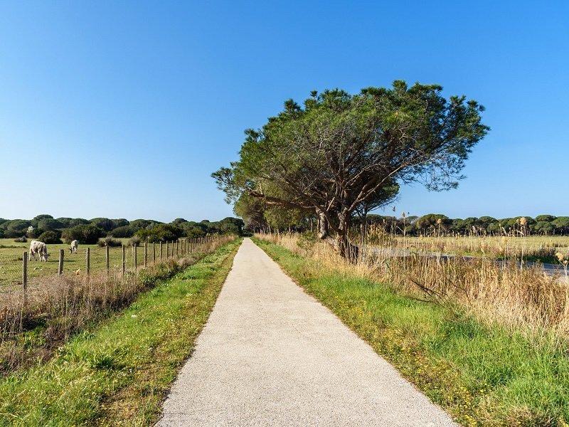 route parc de la maremme