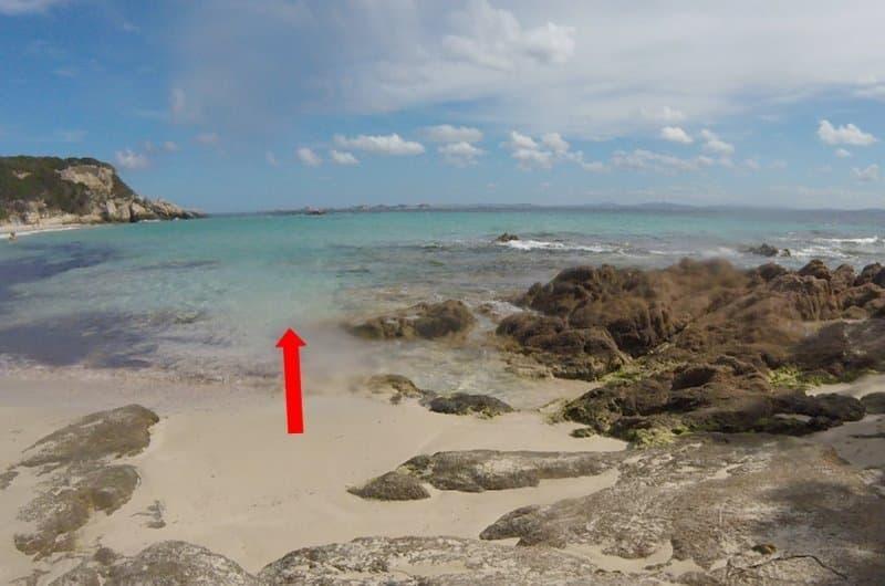 plage de grand sperone snorkeling