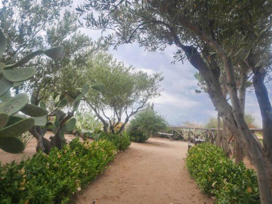 jardin de santa maria dell'isola