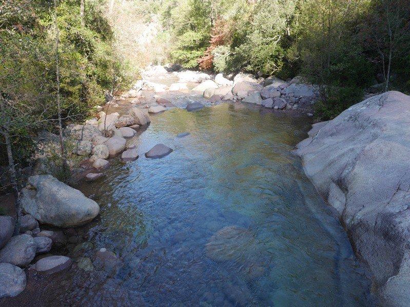 piscine naturelle foret de bonifato