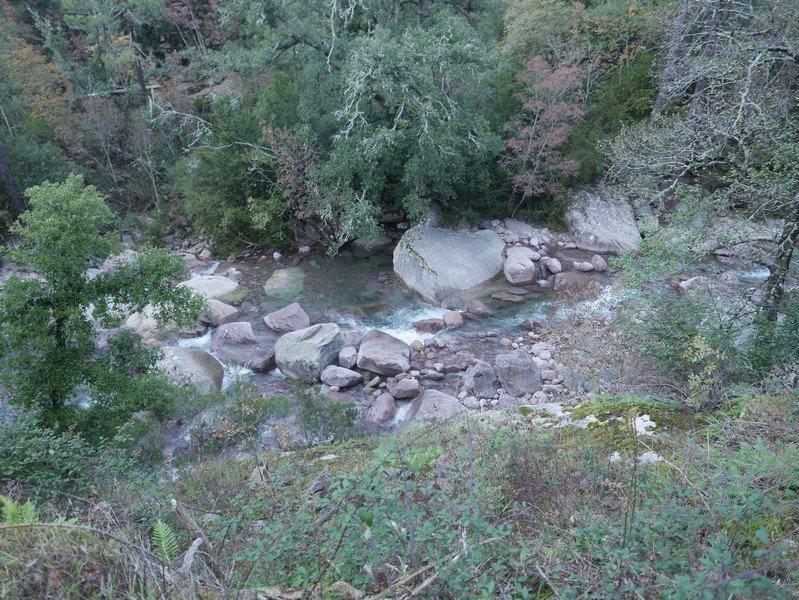 bonifato rivière figarella