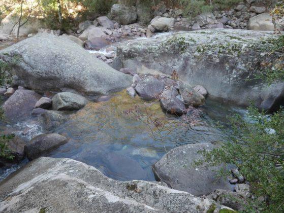 bonifato rivière
