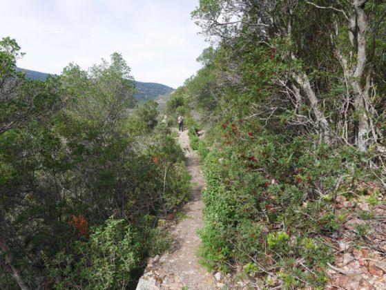 sentier randonnée galéria