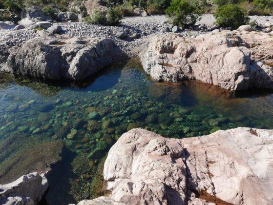 piscine naturelle galeria