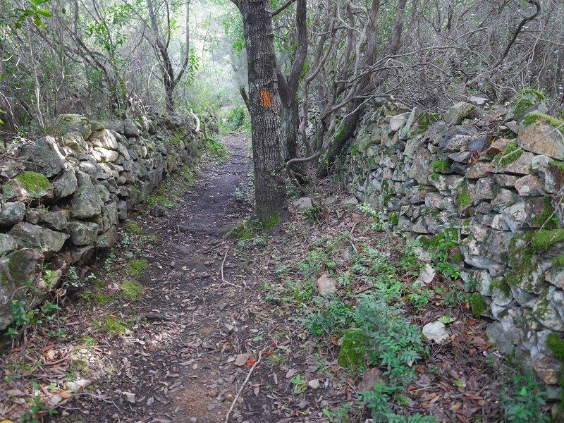 sentier de randonnée galéria