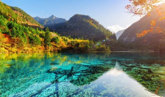 lac des cinq fleurs