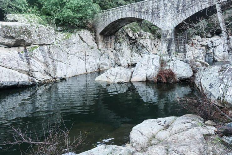 ponte vecchio zoza